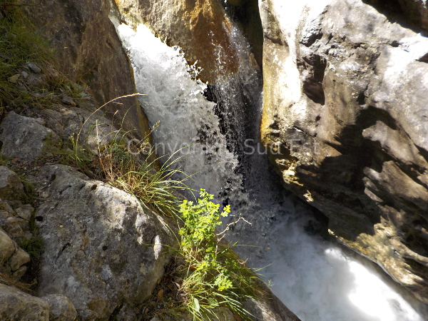 Canyoning Moustiers